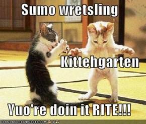 Sumo wretsling  Kittehgarten Yuo're doin it RITE!!!