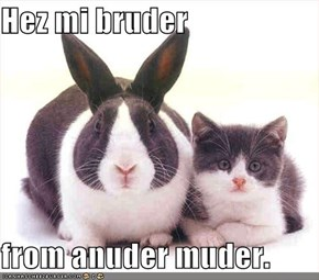 Hez mi bruder  from anuder muder.