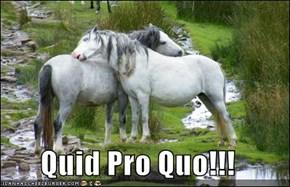 Quid Pro Quo!!!