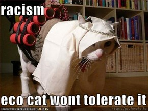 racism  eco cat wont tolerate it