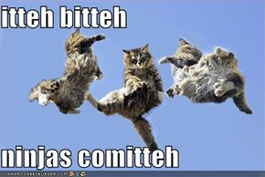 itteh bitteh  ninjas comitteh