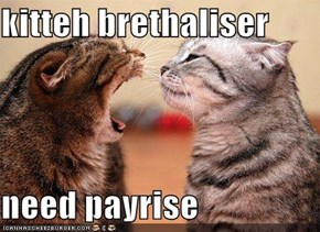 kitteh brethaliser  need payrise