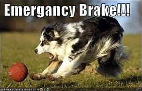 Emergancy Brake!!!