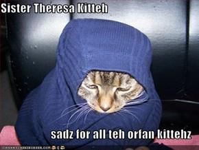 Sister Theresa Kitteh  sadz for all teh orfan kittehz