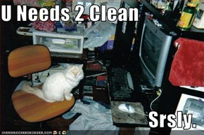 U Needs 2 Clean  Srsly.