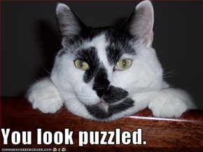 You look puzzled.