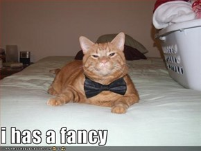 i has a fancy