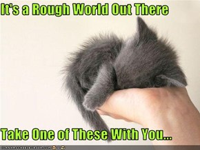It's a Rough World Out There  Take One of These With You...