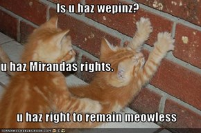 Is u haz wepinz? u haz Mirandas rights. u haz right to remain meowless