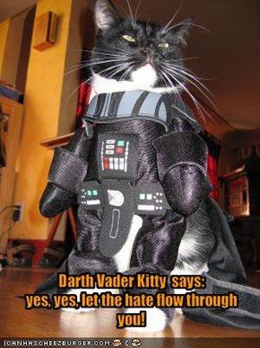 Darth Vader Kitty  says: