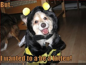 But..  I wanted to a be a kitten!