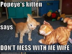 Popeye's kitten says DON'T MESS WITH ME WIFE