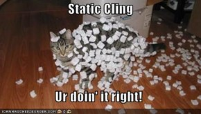 Static Cling                       Ur doin' it right!