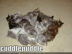 cuddlepuddle