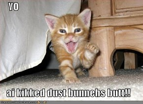 YO  ai kikked dust bunnehs butt!!