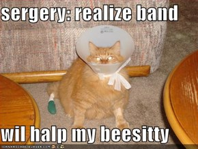 sergery: realize band  wil halp my beesitty