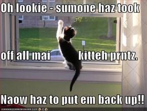 Oh lookie - sumone haz took off all mai            kitteh prntz. Naow haz to put em back up!!