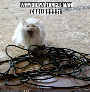 WHY DID YA TANGLE MAH CABLES!!!!!!!!1!