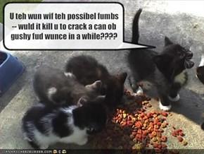 U teh wun wif teh possibel fumbs -- wuld it kill u to crack a can ob gushy fud wunce in a while????