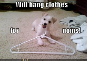 Will hang clothes        for                                noms!