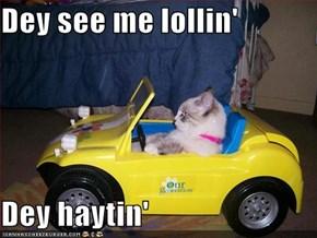 Dey see me lollin'  Dey haytin'