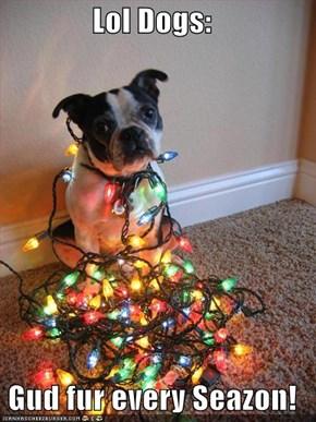 Lol Dogs:   Gud fur every Seazon!