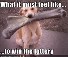 What it must feel like...  ...to win the lottery