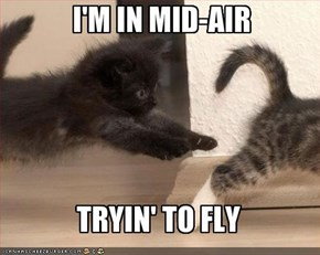 I'M IN MID-AIR