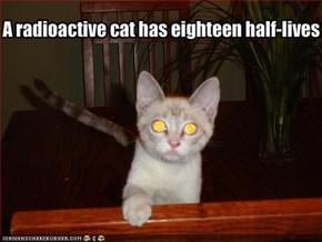 A radioactive cat has eighteen half-lives