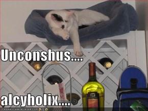Unconshus.... alcyholix....