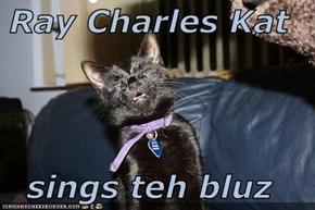 Ray Charles Kat  sings teh bluz