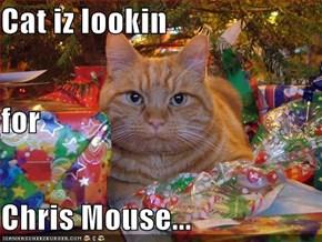 Cat iz lookin for Chris Mouse...
