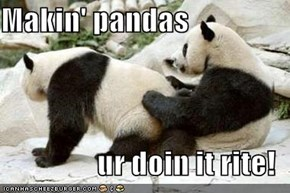 Makin' pandas  ur doin it rite!