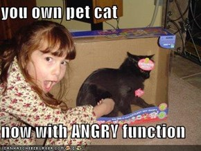 you own pet cat  now with ANGRY function