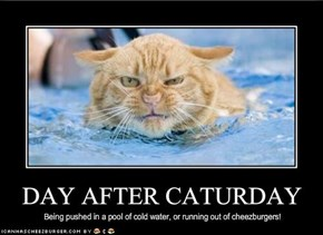 DAY AFTER CATURDAY