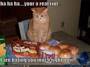 ha ha ha....your a real riot...  I are hating you much right now