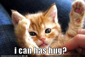 i can has hug?