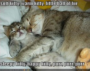 soft kitty, warm kitty, little ball of fur  sleepy kitty, happy kitty, purr, purr, purr