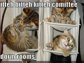 itteh bitteh kitteh comittee  dorm rooms