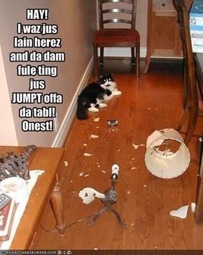 HAY!I waz jus lain herez and da dam fule ting jus JUMPT offa da tabl!Onest!