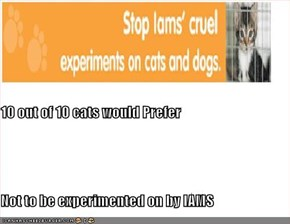 10 out of 10 cats would Prefer Not to be experimented on by IAMS