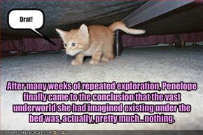 After many weeks of repeated exploration, Penelope finally came to the conclusion that the vast underworld she had imagined existing under the bed was, actually, pretty much...nothing.