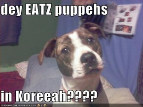dey EATZ puppehs   in Koreeah????