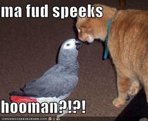 ma fud speeks  hooman?!?!