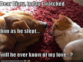 Dear Diary, today I watched him as he slept... will he ever know of my love...?