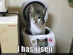 I has risen