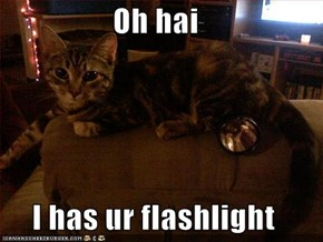 Oh hai  I has ur flashlight