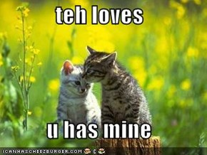 teh loves  u has mine