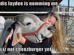 dis laydee is nomming me...  i iz not cheezburger yet