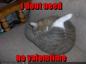 i dont need   no valemtime